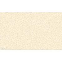 Настенная плитка бежевая глянцевая GD5 - 33x20